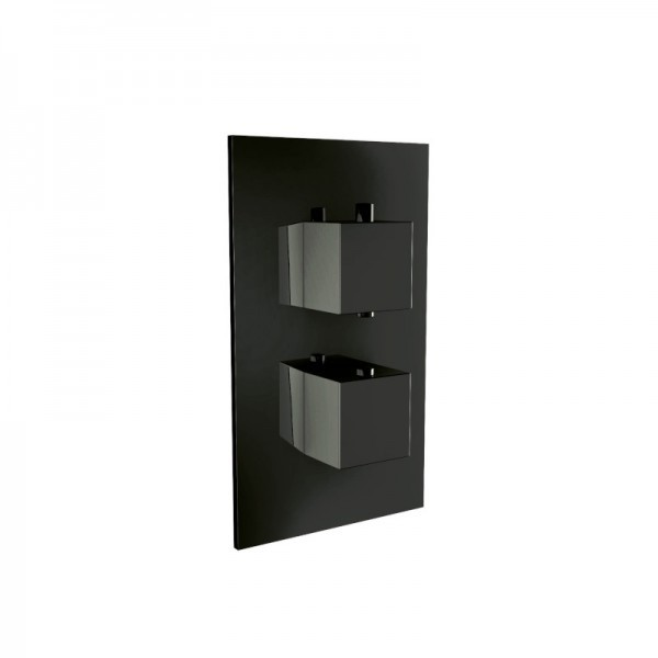 Mono Black Single Outlet Concealed Shower Valve