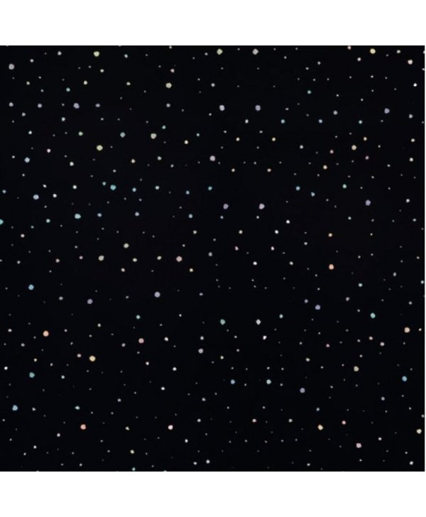 PVC 2.4m x 1m PVC Panel - Black Rainbow Drop